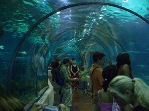 Aquarium de Barcelone