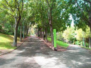 camino de asfalto del Parc Turo de la Peira