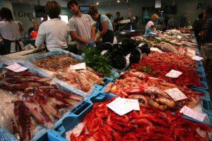 lonja de palamos pescado