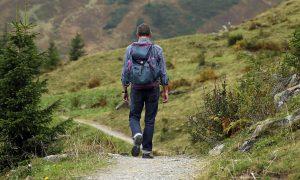 Hombre de espaldas paseando por el monte