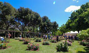 El parque de Cervantes en pleno día soleado