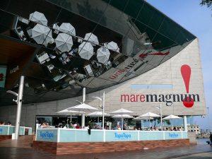 imagen de la entrada en Maremagnum