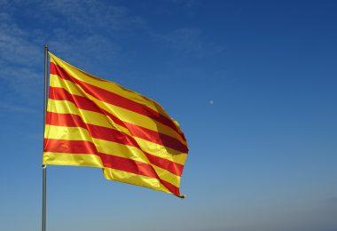 señera historia, señera catalana, señera significado, señera definición, señera y estelada