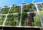 curso jardines verticales Barcelona