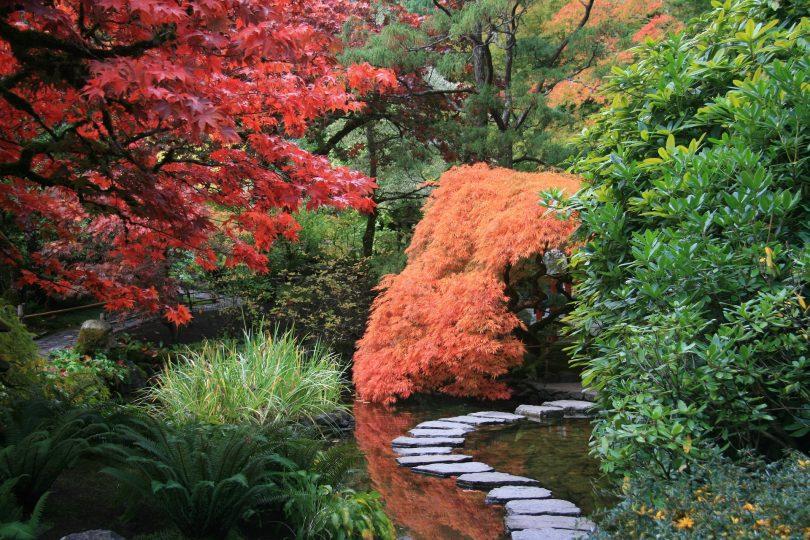 C mo crear un jard n japon s en casa shbarcelona for Vater japones
