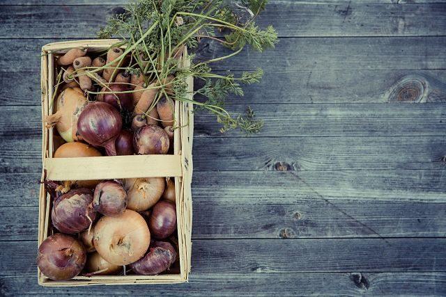 Imagen de una cesta con cebollas ecológicas