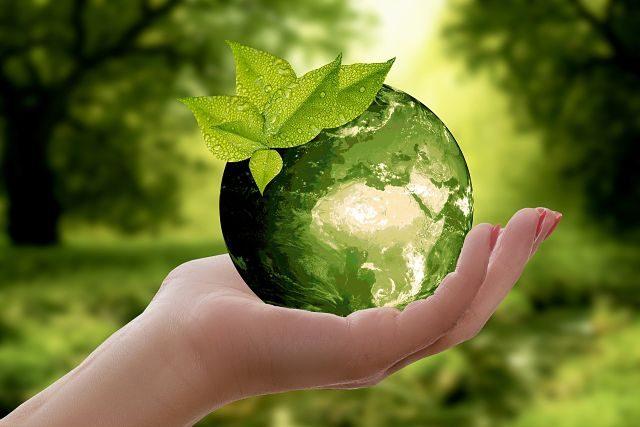 Imagen de una mano con la bola del mundo