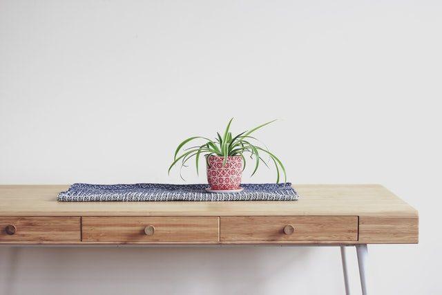 mesa auxiliar con maceta y planta encima
