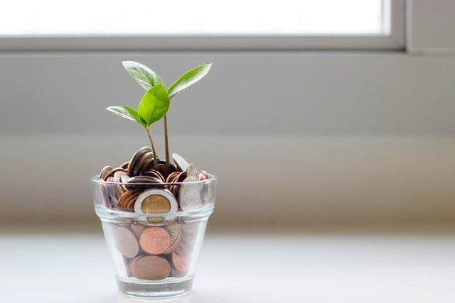 maceta de cristal con monedas y una planta creciendo