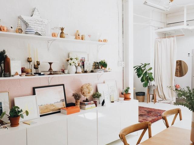 estantería con libros y plantas