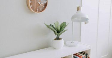planta y lampara sobre una estanteria junto a un reloj de pared