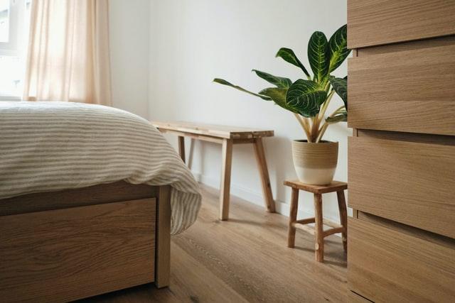 Vaso de planta destaca a beleza do quarto