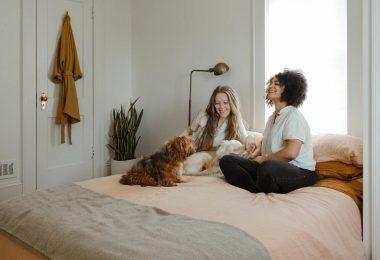 consejos para compartir piso en Barcelona